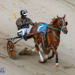 Harness Pony Racing Bermuda, January 28 2018-6316