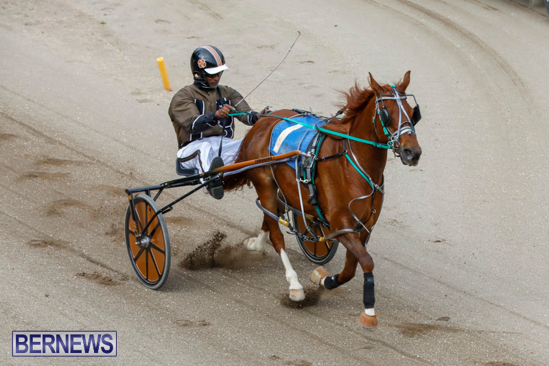 Harness-Pony-Racing-Bermuda-January-28-2018-6316