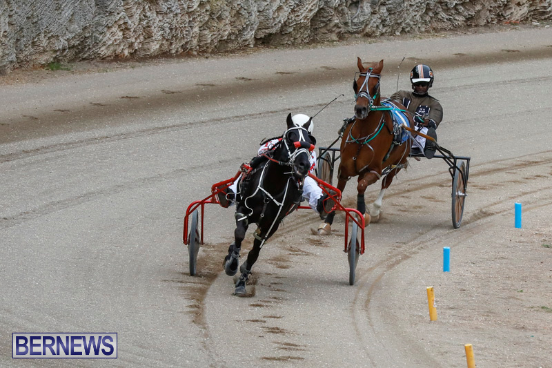 Harness-Pony-Racing-Bermuda-January-28-2018-6321