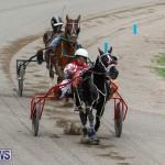 Harness Pony Racing Bermuda, January 28 2018-6323