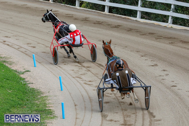 Harness-Pony-Racing-Bermuda-January-28-2018-6331