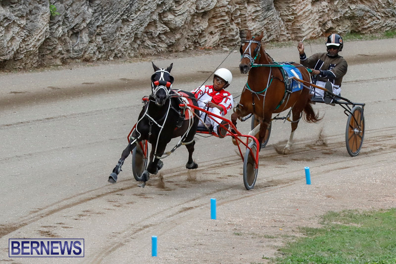 Harness-Pony-Racing-Bermuda-January-28-2018-6336