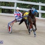 Harness Pony Racing Bermuda, January 28 2018-6347