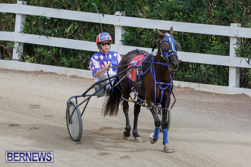 Harness-Pony-Racing-Bermuda-January-28-2018-6350