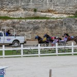 Harness Pony Racing Bermuda, January 28 2018-6374