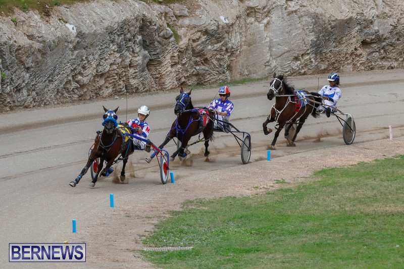 Harness-Pony-Racing-Bermuda-January-28-2018-6377