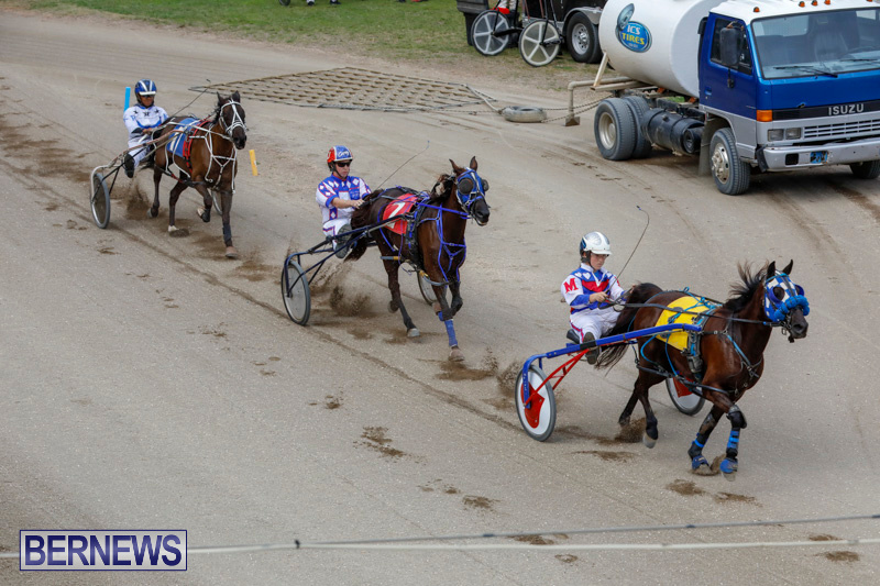 Harness-Pony-Racing-Bermuda-January-28-2018-6388