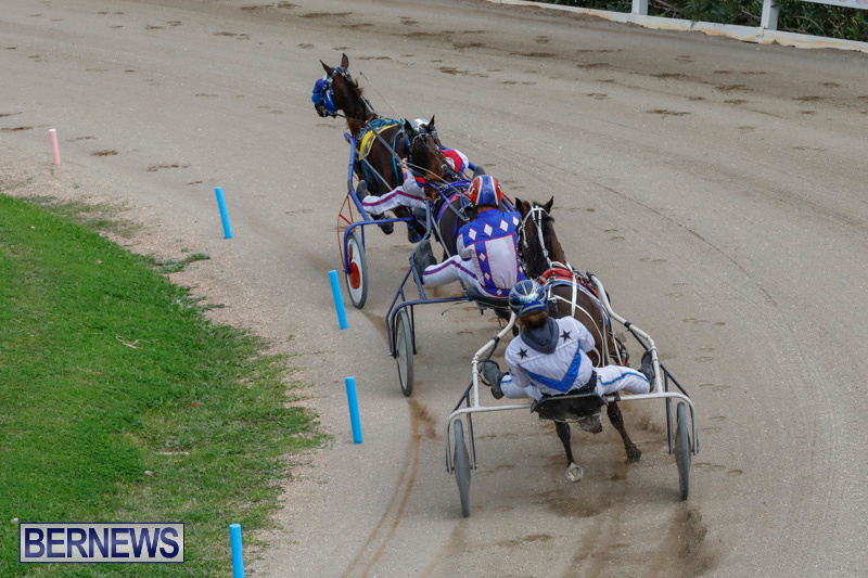Harness-Pony-Racing-Bermuda-January-28-2018-6391