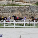 Harness Pony Racing Bermuda, January 28 2018-6395