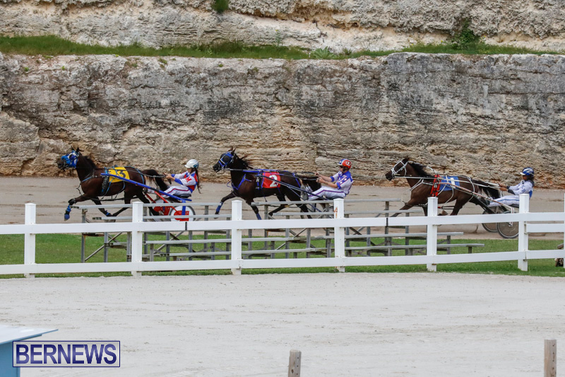 Harness-Pony-Racing-Bermuda-January-28-2018-6395