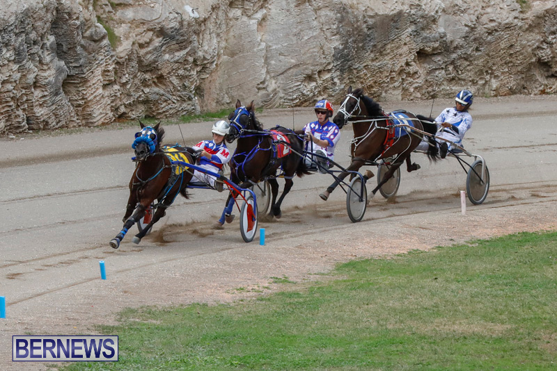 Harness-Pony-Racing-Bermuda-January-28-2018-6397