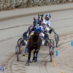 Harness Pony Racing Bermuda, January 28 2018-6401