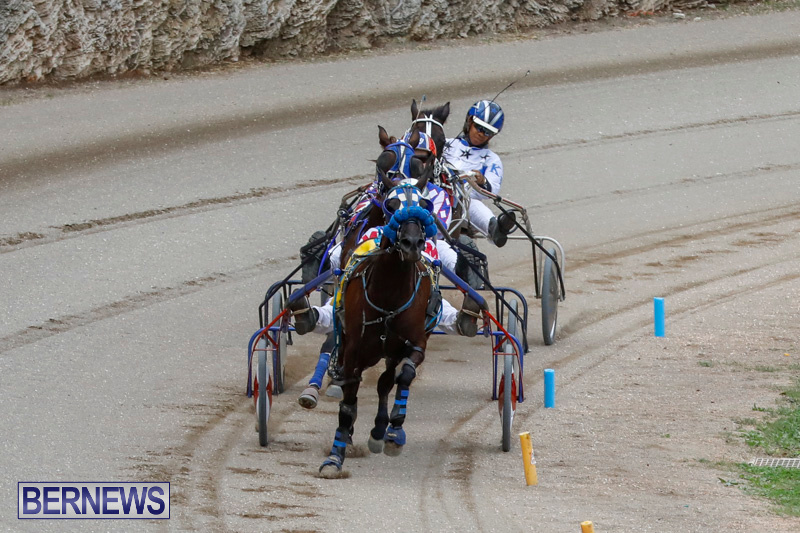 Harness-Pony-Racing-Bermuda-January-28-2018-6401
