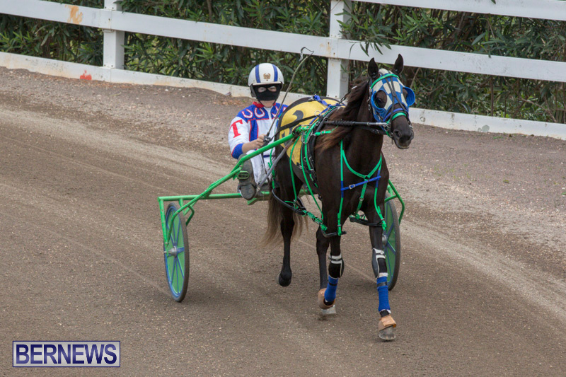 Harness-Pony-Racing-Bermuda-January-28-2018-6428