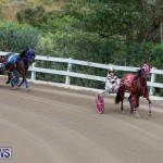 Harness Pony Racing Bermuda, January 28 2018-6431