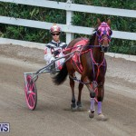 Harness Pony Racing Bermuda, January 28 2018-6433