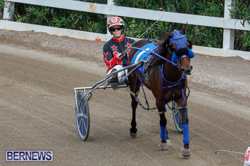 Harness-Pony-Racing-Bermuda-January-28-2018-6437