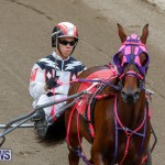 Harness Pony Racing Bermuda, January 28 2018-6443