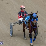 Harness Pony Racing Bermuda, January 28 2018-6448