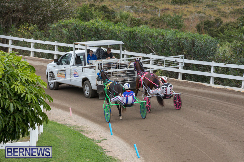 Harness-Pony-Racing-Bermuda-January-28-2018-6453
