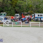 Harness Pony Racing Bermuda, January 28 2018-6454