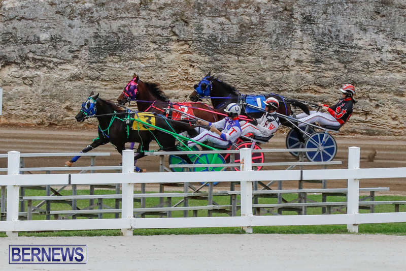 Harness-Pony-Racing-Bermuda-January-28-2018-6456