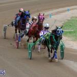 Harness Pony Racing Bermuda, January 28 2018-6463