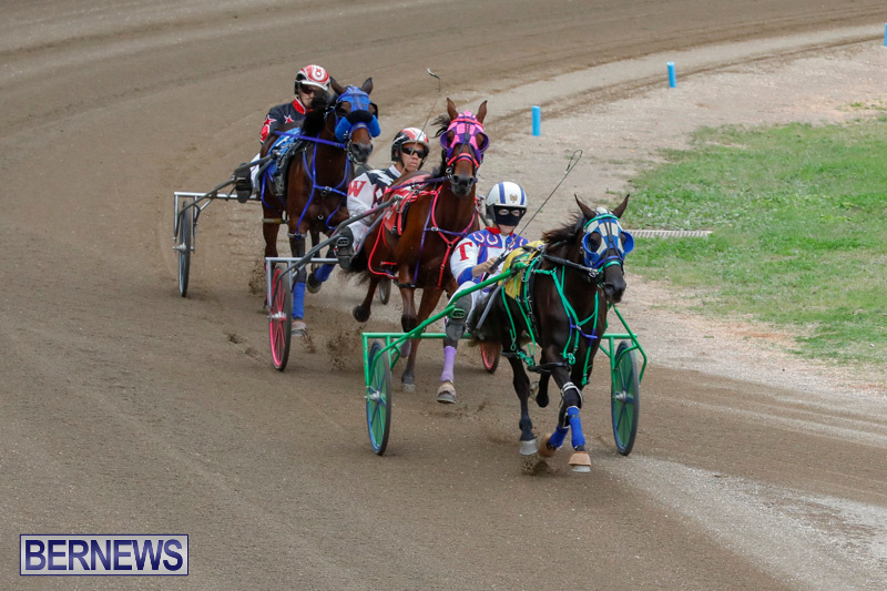 Harness-Pony-Racing-Bermuda-January-28-2018-6463