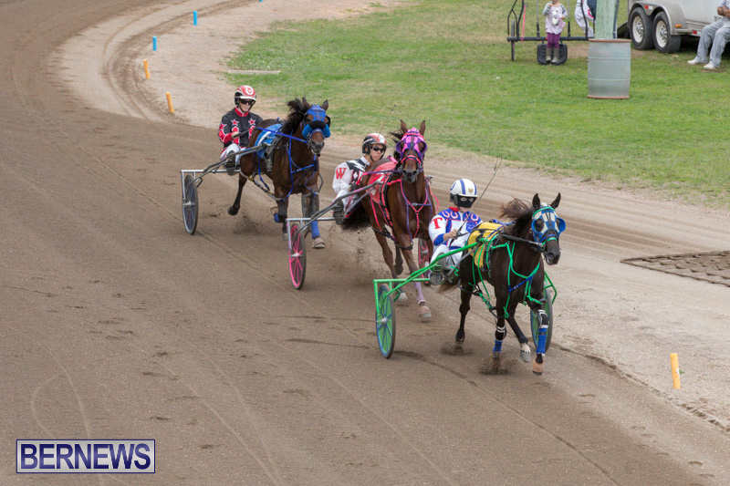 Harness-Pony-Racing-Bermuda-January-28-2018-6466