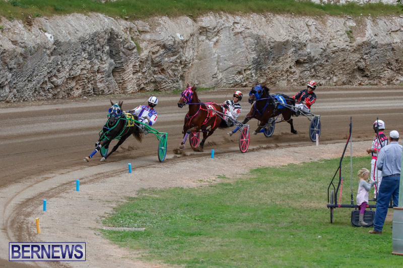 Harness-Pony-Racing-Bermuda-January-28-2018-6473