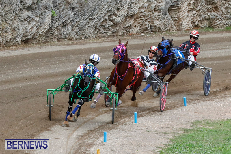Harness-Pony-Racing-Bermuda-January-28-2018-6474