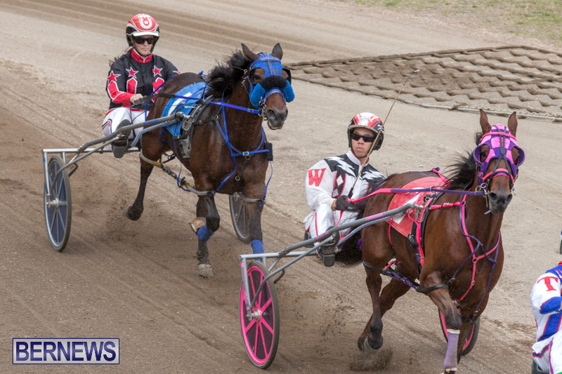 Harness-Pony-Racing-Bermuda-January-28-2018-6480