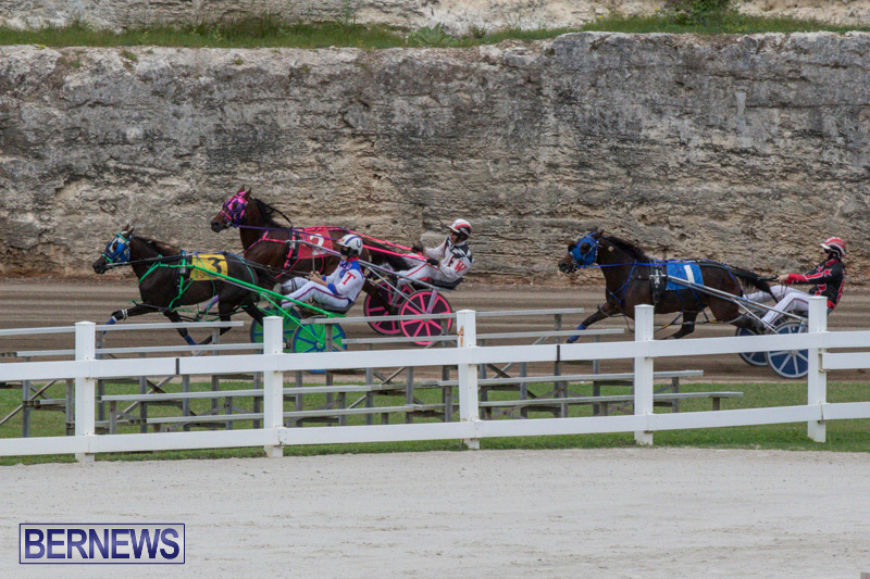 Harness-Pony-Racing-Bermuda-January-28-2018-6484