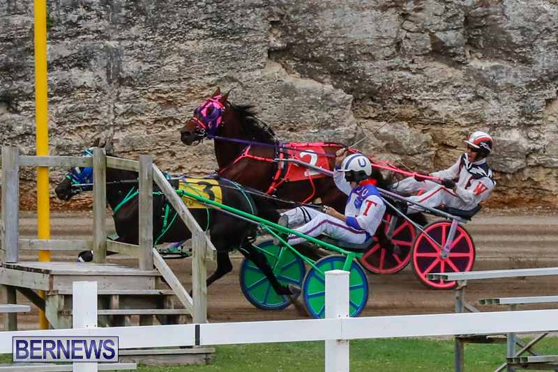 Harness-Pony-Racing-Bermuda-January-28-2018-6485