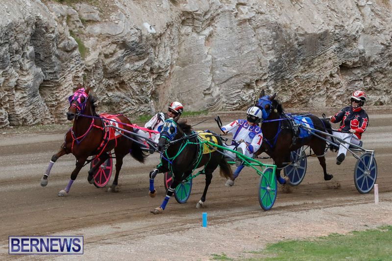 Harness-Pony-Racing-Bermuda-January-28-2018-6488