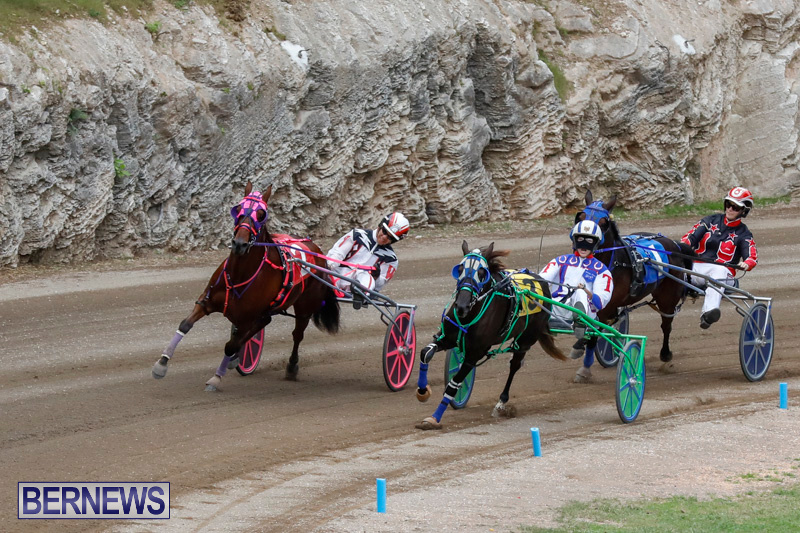 Harness-Pony-Racing-Bermuda-January-28-2018-6489