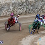 Harness Pony Racing Bermuda, January 28 2018-6491