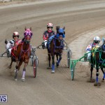 Harness Pony Racing Bermuda, January 28 2018-6496