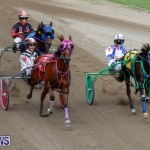 Harness Pony Racing Bermuda, January 28 2018-6499