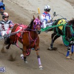 Harness Pony Racing Bermuda, January 28 2018-6502