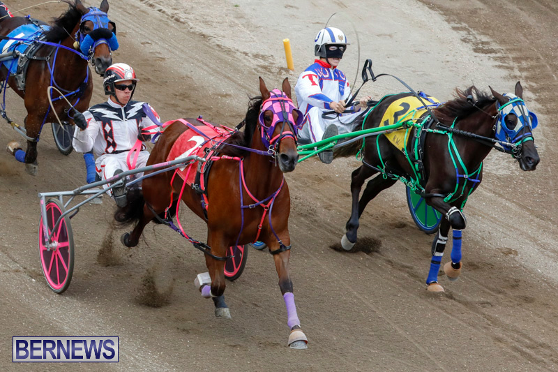 Harness-Pony-Racing-Bermuda-January-28-2018-6502