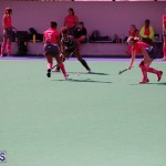 Hockey Bermuda Jan 17 2018 (6)