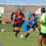 Middle Girls Bermuda School Sports Federation All Star Football, January 20 2018-3597