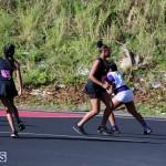 Netball Bermuda Jan 24 2018 (14)