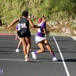 Netball Bermuda Jan 24 2018 (19)