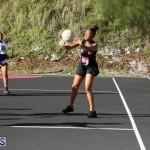 Netball Bermuda Jan 24 2018 (4)