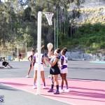 Netball Bermuda Jan 24 2018 (9)