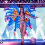 Nova Mas International Bermuda Heroes Weekend BHW The Launch, January 14 2018-0448