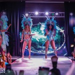 Party People Bermuda Heroes Weekend BHW The Launch, January 14 2018-8806