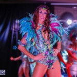Party People Bermuda Heroes Weekend BHW The Launch, January 14 2018-8831